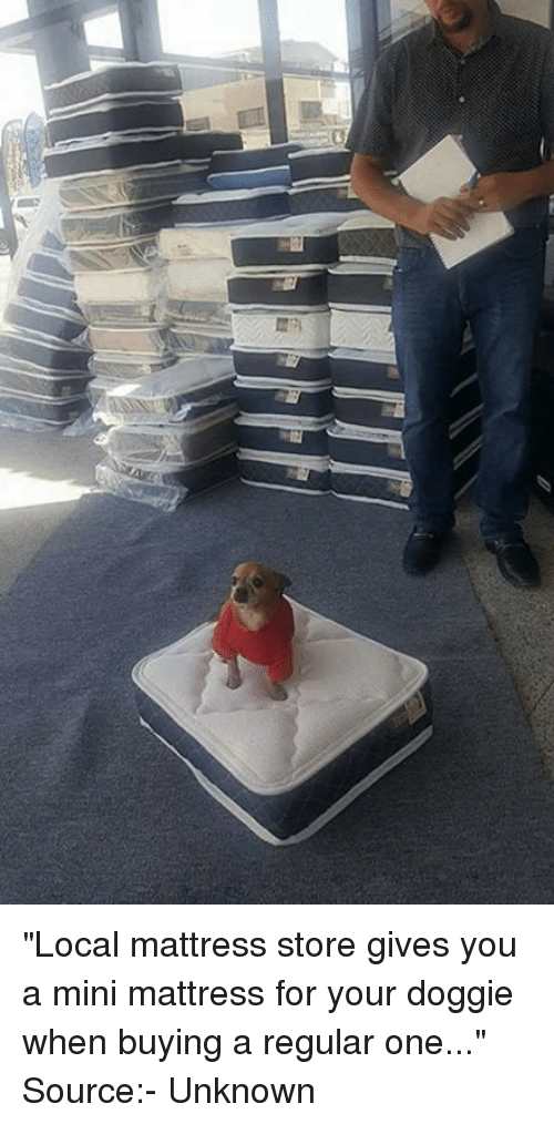 """Memes, Mattress, and 🤖: """"Local mattress store gives you a mini mattress for your doggie when buying a regular one...""""   Source:- Unknown"""