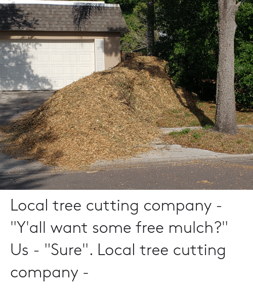 Killing Them Softly With Their Mulch >> Local Tree Cutting Company Y All Want Some Free Mulch Us Sure