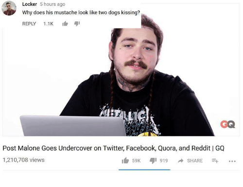 Dogs, Facebook, and Post Malone: Locker 5 hours ago  Why does his mustache look like two dogs kissing?  REPLY 1.1K 1  GQ  Post Malone Goes Undercover on Twitter, Facebook, Quora, and Reddit | GQ  1,210,708 views