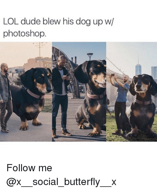 Dude, Lol, and Memes: LOL dude blew his dog up w/  photoshop Follow me @x__social_butterfly__x
