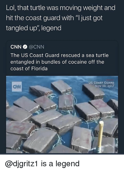 """cnn.com, Lol, and Memes: Lol, that turtle was moving weight and  hit the coast guard with """"l just got  tangled up', legend  CNN @CNN  The US Coast Guard rescued a sea turtle  entangled in bundles of cocaine off the  coast of Florida  US COAST GUARD  Nov 19, 2017  CNN @djgritz1 is a legend"""