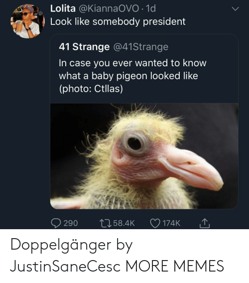 Dank, Doppelganger, and Memes: Lolita @KiannaOVO 1d  Look like somebody president  41 Strange @41Strange  In case you ever wanted to know  what a baby pigeon looked like  (photo: Ctllas)  290 t058.4 174K Doppelgänger by JustinSaneCesc MORE MEMES