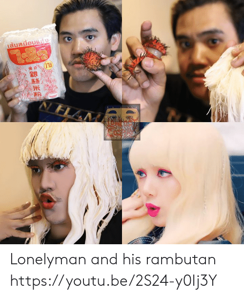 Dank, Youtu, and 🤖: Lonelyman and his rambutan  https://youtu.be/2S24-y0Ij3Y