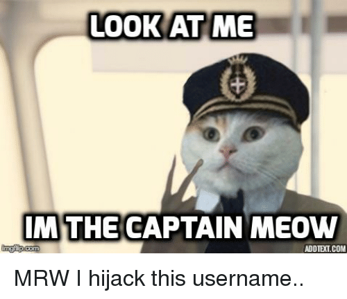 look at me m the captain meow mglip com addtext com 19228754 ✅ 25 best memes about captain meow captain meow memes,Meow Meme
