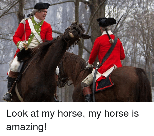 25+ Best Memes About My Horse Is Amazing