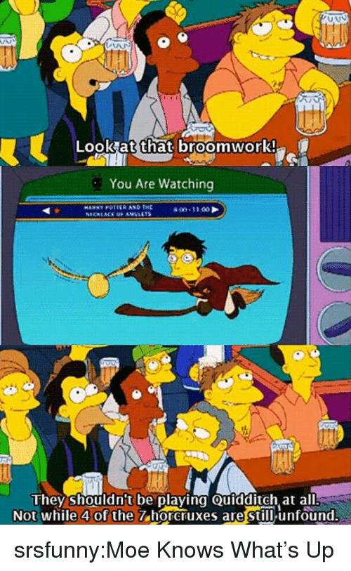 Tumblr, Blog, and Http: Look at that broomwork!  You Are Watching  HAMNY POTTER AND THE  they shouldn't be playing Quidditch at all  Not while 4 of the  7 horcruxes are still unfound. srsfunny:Moe Knows What's Up