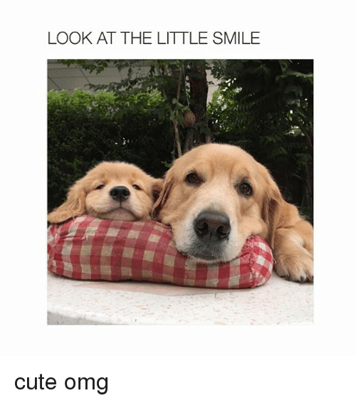 little smile
