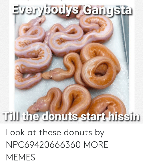 Dank, Memes, and Target: Look at these donuts by NPC69420666360 MORE MEMES