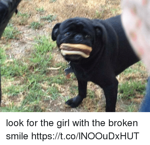 Girl, Smile, and Girl Memes: look for the girl with the broken smile https://t.co/lNOOuDxHUT