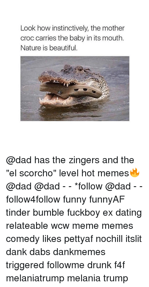 """Beautiful, The Dab, and Dad: Look how instinctively, the mother  croc carries the baby in its mouth.  Nature is beautiful. @dad has the zingers and the """"el scorcho"""" level hot memes🔥 @dad @dad - - *follow @dad - - follow4follow funny funnyAF tinder bumble fuckboy ex dating relateable wcw meme memes comedy likes pettyaf nochill itslit dank dabs dankmemes triggered followme drunk f4f melaniatrump melania trump"""