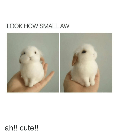 How Small