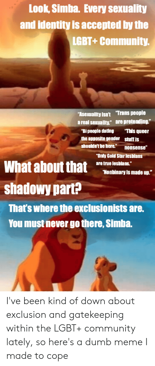 """Community, Dating, and Dumb: Look, Simba. Every sexuality  and identity is accepted by the  LGBT+Community.  """"Asexuality isn't Trans people  a real sexuallty."""" are pretending.""""  This queer  """"Bi people dating  the opposite gender  stuff is  shouldn't be here.""""  nonsense""""  """"Only Gold Star lesblans  What about that  are true leshians.""""  """"Nonbinary Is made up.""""  shadowy part?  That's where the exclusionists are.  You must never go there, Simba. I've been kind of down about exclusion and gatekeeping within the LGBT+ community lately, so here's a dumb meme I made to cope"""