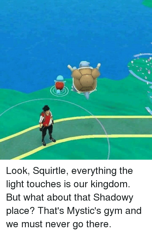 Everything The Light Touches