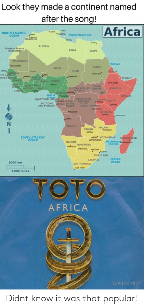 Africa, Reddit, and Ocean: Look they made a continent named  after the song!  Africa  ALGIERS TUNIS  NORTH ATLANTIC  OCEAN  TUNISIA Mediterranean Sea  Caablanc  MOROCCO  ALGERIA  Western Sahara  LIBYA  Disput  EGYPT  URITANIA  Red Sea  SUDAN  NIGER  MALI  CHAD  HARTOUN  THE  UINEA  NDJAMENA  ADOIS ABABA  LIB  Gulf of  DEMOCRATIC UGANDA KENYA  SAO TOME  AND PRINCIPE  ANZANIA  ZAMBIA MALAWI  SOUTH ATLANTIC  OCEAN  HARARE MOZAMBIQUE  ZIMBABWE  NAMIBIA  Moza  Channel  whoHox BOTSWANA  MAPUTO  SWAZILAND  INDIAN  OCEAN  1000 km  SOUTH AFRICA  CAPE TOWN  1000 miles  TOTO  AFRICA Didnt know it was that popular!