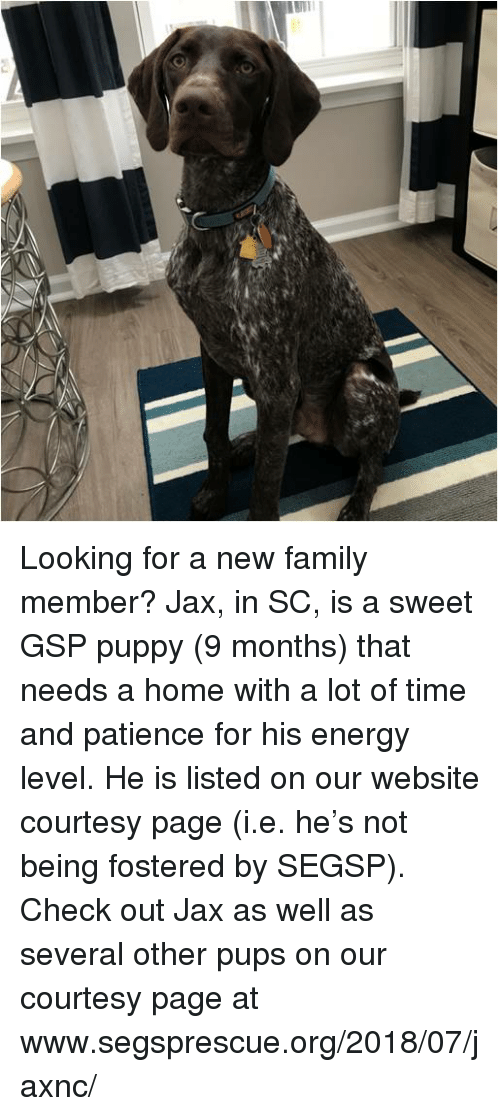 looking for a family member