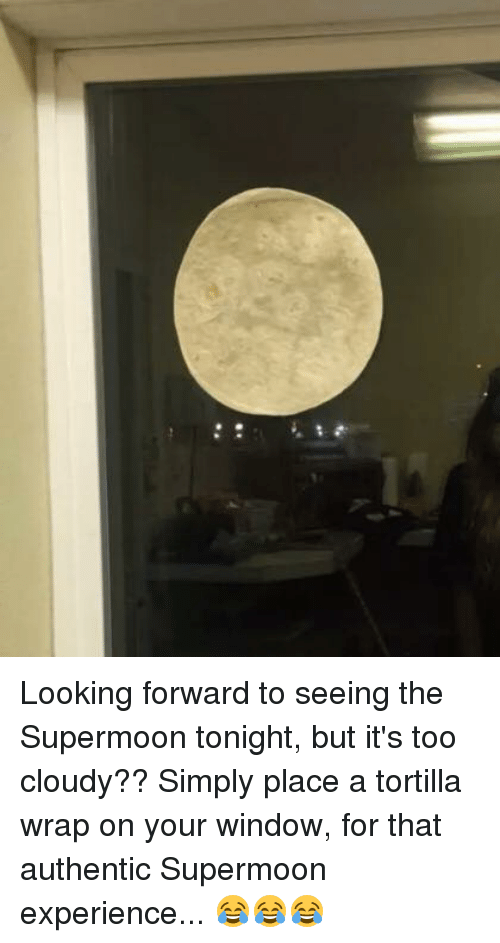 looking forward to seeing the supermoon tonight but its too 6898185 ✅ 25 best memes about tortilla tortilla memes,Tortilla Moon Meme
