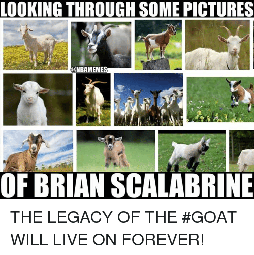 Nba, Goat, and Legacy: LOOKING THROUGH SOME PICTURES  @NBAMEMES  OF BRIAN SCALABRINE THE LEGACY OF THE #GOAT WILL LIVE ON FOREVER!