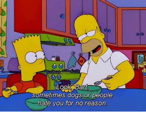 Dogs, Memes, and Bart: Looks Bart  Sometimes dogs or people  hate you for no reason