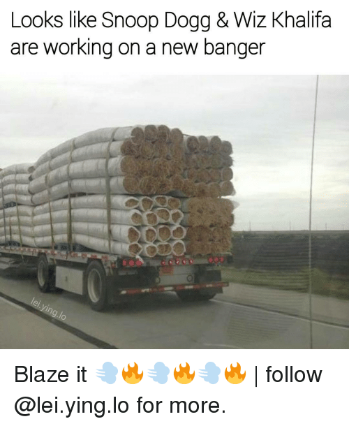 Memes, Snoop, and Snoop Dogg: Looks like Snoop Dogg & Wiz Khalifa  are working on a new banger Blaze it 💨🔥💨🔥💨🔥 | follow @lei.ying.lo for more.