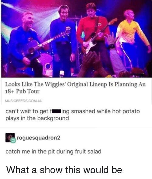 Potato, The Wiggles, and Com: Looks Like The Wiggles' Original Lineup Is Planning An  18+ Pub Tour  MUSICFEEDS.COM.AU  can't wait to get fing smashed while hot potato  plays in the background  roguesquadron2  catch me in the pit during fruit salad What a show this would be