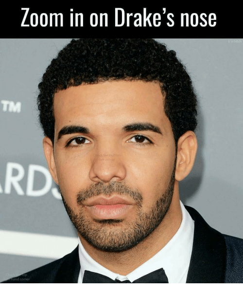 Loom in on Drake's Nose and Corner U a Bitch | Meme on me.me