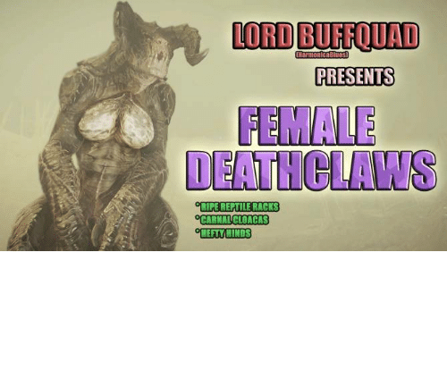 LORD BUFFQUAD HarmonicaBlues PRESENTS FEMALE DEATHCLAWS