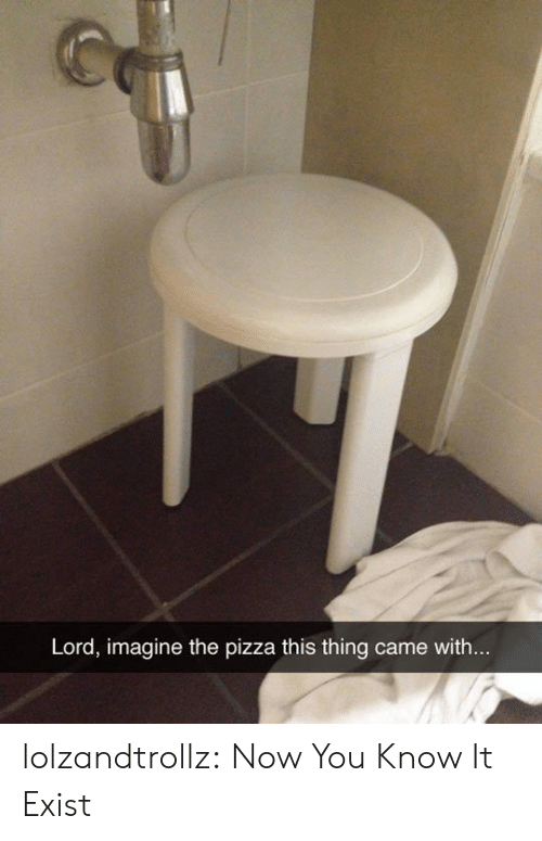 Pizza, Tumblr, and Blog: Lord, imagine the pizza this thing came with... lolzandtrollz:  Now You Know It Exist