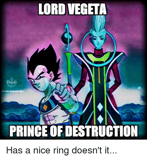 Memes, Prince, and Vegeta: LORD VEGETA  PRINCE OFDESTRUCTION Has a nice ring doesn't it...