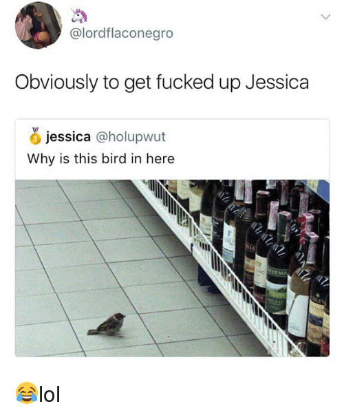 Memes, 🤖, and Why: @lordflaconegro  Obviously to get fucked up Jessica  jessica @holupwut  Why is this bird in here  ERMA 😂lol
