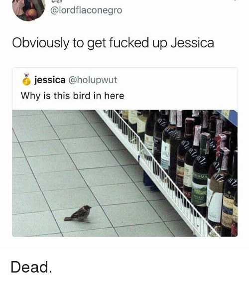 Gym, Why, and This: @lordflaconegro  Obviously to get fucked up Jessica  jessica (oholupwut  Why is this bird in here  KERMA Dead.