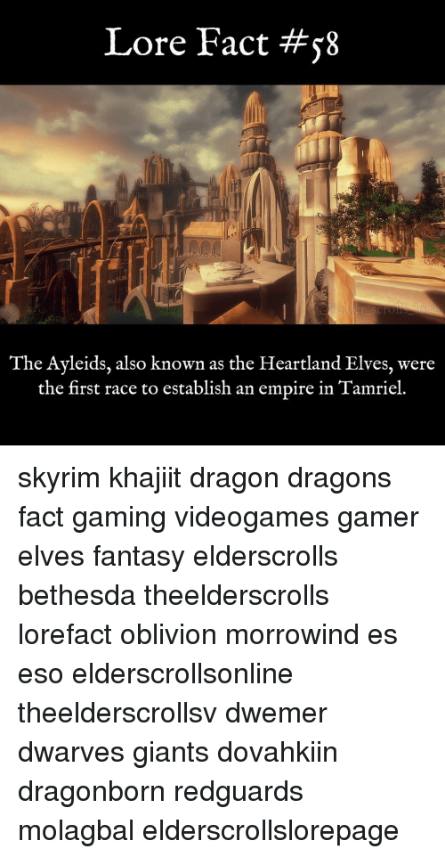 Memes, Giant, and Giants: Lore Fact #58  The Ayleids, also known as the Heartland Elves, were  the first race to establish an empire in Tamriel. skyrim khajiit dragon dragons fact gaming videogames gamer elves fantasy elderscrolls bethesda theelderscrolls lorefact oblivion morrowind es eso elderscrollsonline theelderscrollsv dwemer dwarves giants dovahkiin dragonborn redguards molagbal elderscrollslorepage