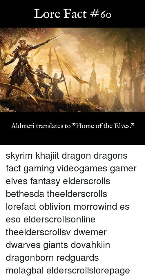 "Memes, Giant, and Giants: Lore Fact #60  Aldmeri translates to ""Home of the Elves."" skyrim khajiit dragon dragons fact gaming videogames gamer elves fantasy elderscrolls bethesda theelderscrolls lorefact oblivion morrowind es eso elderscrollsonline theelderscrollsv dwemer dwarves giants dovahkiin dragonborn redguards molagbal elderscrollslorepage"
