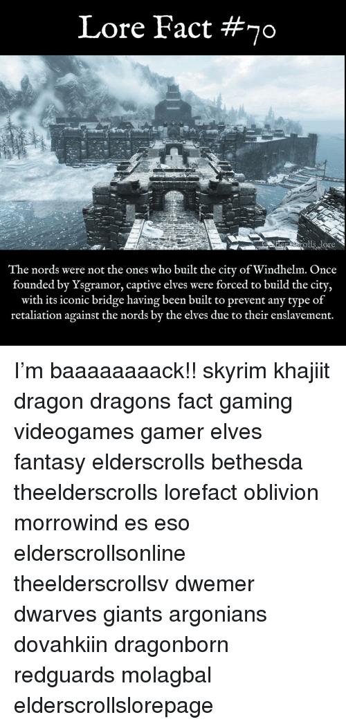 Memes, Skyrim, and Giants: Lore Fact #70  The nords were not the ones who built the city of Windhelm. Once  founded by Ysgramor, captive elves were forced to build the city,  with its iconic bridge having been built to prevent any type of  retaliation against the nords by the elves due to their enslavement. I'm baaaaaaaack!! skyrim khajiit dragon dragons fact gaming videogames gamer elves fantasy elderscrolls bethesda theelderscrolls lorefact oblivion morrowind es eso elderscrollsonline theelderscrollsv dwemer dwarves giants argonians dovahkiin dragonborn redguards molagbal elderscrollslorepage