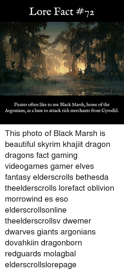 Beautiful, Memes, and Skyrim: Lore Fact #72  @elder_scrols_lore  Pirates often like to use Black Marsh, home of the  Argonians, as a base to attack rich merchants from Cyrodiil. This photo of Black Marsh is beautiful skyrim khajiit dragon dragons fact gaming videogames gamer elves fantasy elderscrolls bethesda theelderscrolls lorefact oblivion morrowind es eso elderscrollsonline theelderscrollsv dwemer dwarves giants argonians dovahkiin dragonborn redguards molagbal elderscrollslorepage