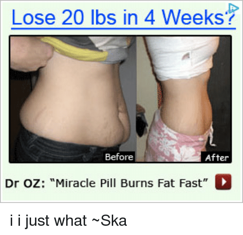 Memes, Dr Oz, and Fat: Lose 20 lbs in 4 Weeks? Before