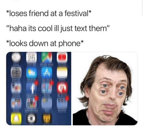 Loses Friend at a Festival* Haha Its Cool Ill Just Text Them Looks