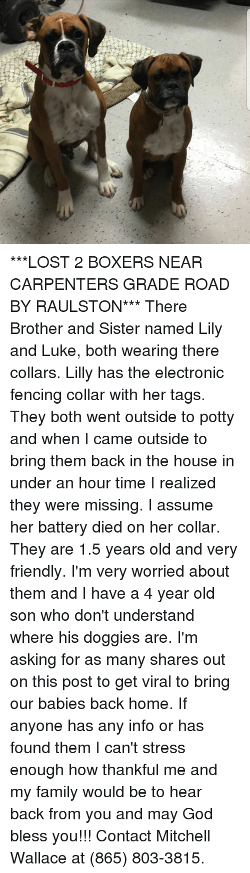 Family, God, and Memes: ***LOST 2 BOXERS NEAR CARPENTERS GRADE ROAD BY RAULSTON*** There Brother and Sister named Lily and Luke, both wearing there collars. Lilly has the electronic fencing collar with her tags. They both went outside to potty and when I came outside to bring them back in the house in under an hour time I realized they were missing. I assume her battery died on her collar. They are 1.5 years old and very friendly. I'm very worried about them and I have a 4 year old son who don't understand where his doggies are. I'm asking for as many shares out on this post to get viral to bring our babies back home. If anyone has any info or has found them I can't stress enough how thankful me and my family would be to hear back from you and may God bless you!!! Contact Mitchell Wallace at (865) 803-3815.