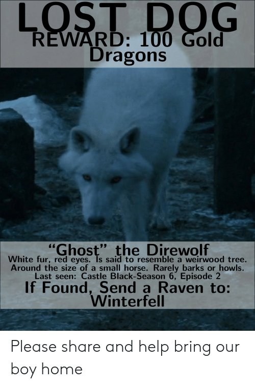 LOST D RD 100 Gold Dragons Ghost the Direwolf White Fur Red