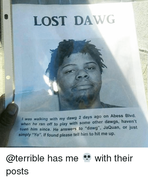 """Yo, Lost, and Trendy: LOST DAWG  I was walking with my dawg 2 days ago on Abess Blvd.  when he ran off to play with some other dawgs, haven't  seen him since. He answers to """"dawg"""", JaQuan, or just  simply """"Yo"""". If found please tell him to hit me up. @terrible has me 💀 with their posts"""