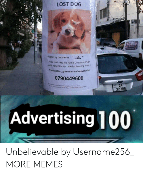 "Dank, Memes, and Target: LOST DOG  He goes by the name""  f you can't read his name , because it's an  Arabic name! Contact me for learning Arabic:  ronunciation, grammar and conversation  Pr  0790449606  32388  Advertising 100 Unbelievable by Username256_ MORE MEMES"
