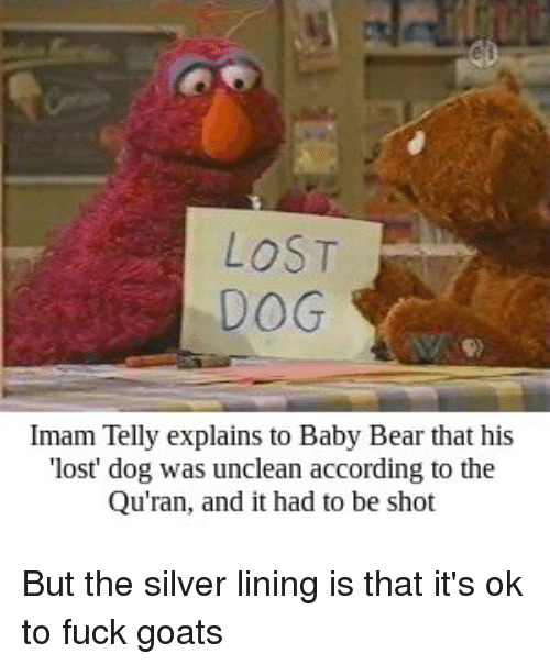Lost, Bear, and Fuck: LOST  DOG  Imam Telly explains to Baby Bear that his  'lost dog was unclean according to the  Qu'ran, and it had to be shot But the silver lining is that it's ok to fuck goats