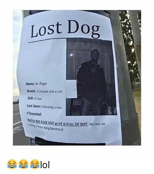 Hoe, Memes, and Shit: Lost Dog Name: H. Page Breed: