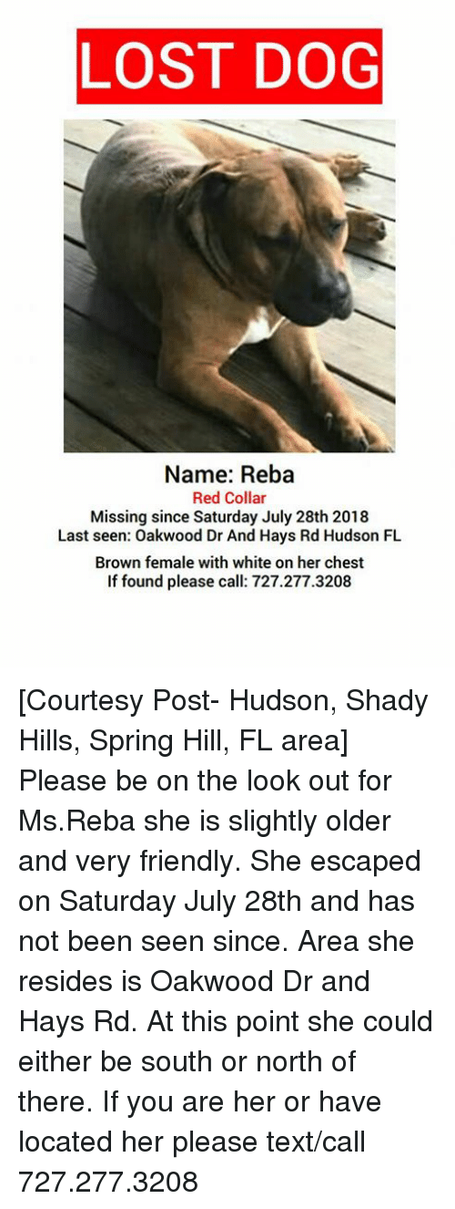 LOST DOG Name Reba Red Collar Missing Since Saturday July 28th 2018