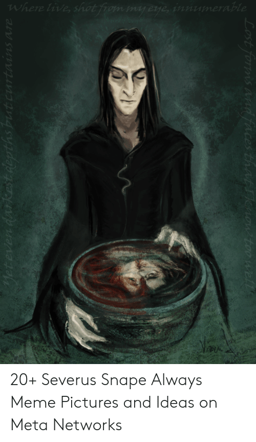 Lost Towns 20+ Severus Snape Always Meme Pictures and Ideas