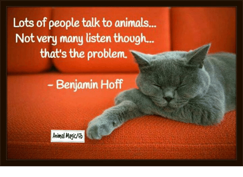 "Image result for ""Lots of people talk to animals . . . not very many listen though."""