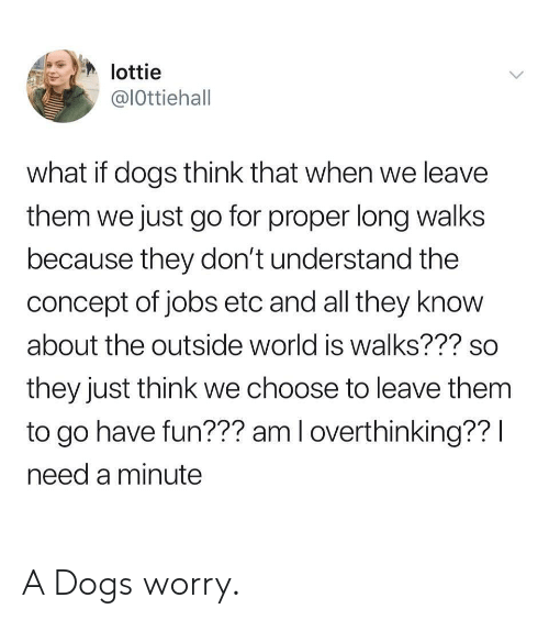 Dogs, Jobs, and World: lottie  @lOttiehall  what if dogs think that when we leave  them we just go for proper long walks  because they don't understand the  concept of jobs etc and all they know  about the outside world is walks??? so  they just think we choose to leave them  to go have fun??? am l overthinking?? l  need a minute A Dogs worry.