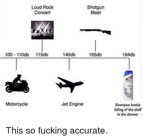 Anaconda, Fucking, and Shower: Loud Rock  Concert  Shotgun  Blast  100 11Odb 115db  140db  165db  194db  Motorcycle  Jet Engine  Shampoo bottle  falling of the shelf  in the shower This so fucking accurate.