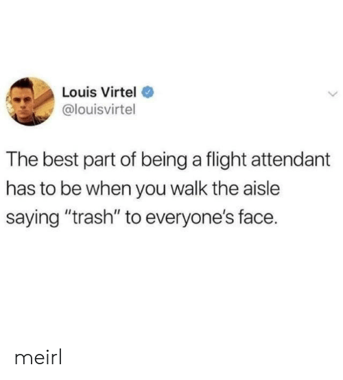 "Trash, Best, and Flight: Louis Virtel  @louisvirtel  The best part of being a flight attendant  has to be when you walk the aisle  saying ""trash"" to everyone's face. meirl"