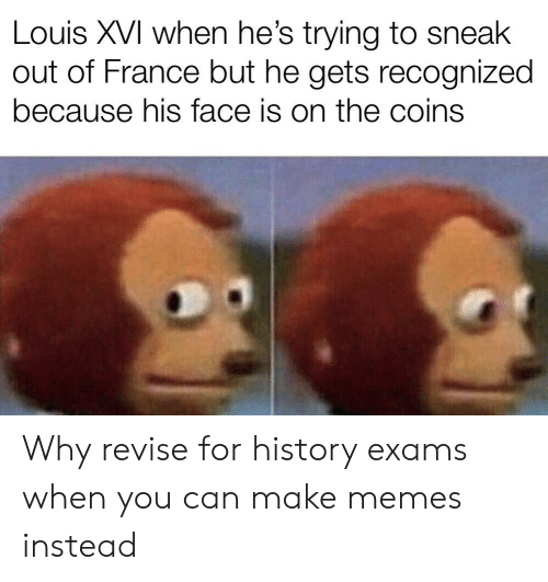 Memes, France, and History: Louis XVI when he's trying to sneak  out of France but he gets recognized  because his face is on the coins Why revise for history exams when you can make memes instead