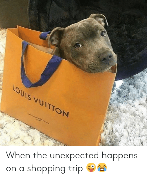 Memes, Shopping, and 🤖: Louis yUITTON When the unexpected happens on a shopping trip 😜😂